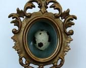 little blown quail egg in vintage gilt shadow box frame