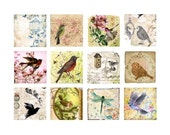 Vignettes of Nature No. 1 - 2x2 - Digital Collage Sheet - Instant Download