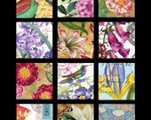 Vignettes of Nature No. 9 - 2x2 Inch Squares Digital Collage Sheet - See Storefront for Monthly Coupon Code