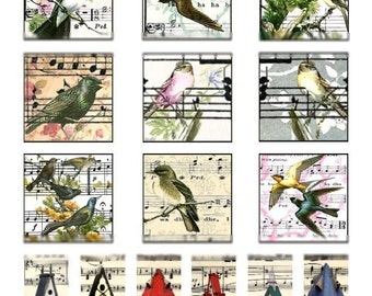 Birds and Bird Houses on Music - 1x2 and 2x2 - Digital Collage Sheet - Instant Download