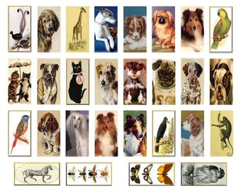 Animal Domino No. 1 - 1x2 - Digital Collage Sheet - Instant Download