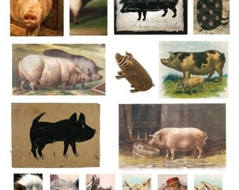 Oh For Pigs Sake - Digital Collage Sheet - Instant Download