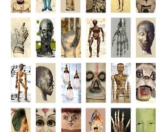 Oddities No. 1 - 1x2 - Digital Collage Sheet - Instant Download