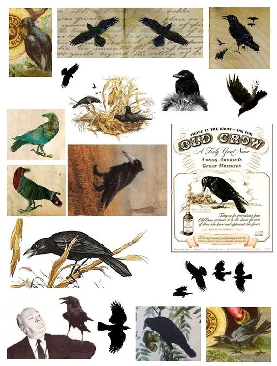 Black Crows and Ravens No. 5 - Digital Collage Sheet - Instant Download
