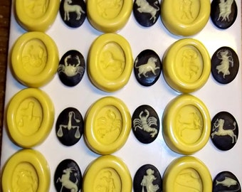 Zodiac Cameo Set/12  Flexible Push Mold Mould For Resin Paper Clay Sculpey Fimo Polymer Premo Wax Chocolate (J248)