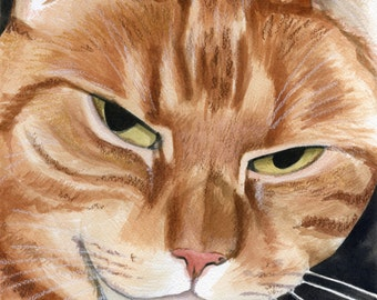A Close Up of D the wonder cat; a Watercolor painting.........Custom pet portraits
