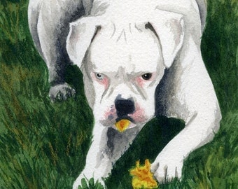 Sugar's Flower a watercolor painting.........Custom Pet Portraits
