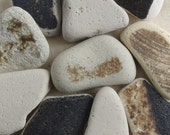 Rustic Brown Beach Pottery- 10 Pieces - Mosaic Craft Supply