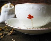 Reclaimed Ivory fine china tea cup and saucer - modern poppy design