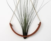 Hanging Planter - Air Plant Cradle (tm) - Natural TerraCotta Wall Planter Vase