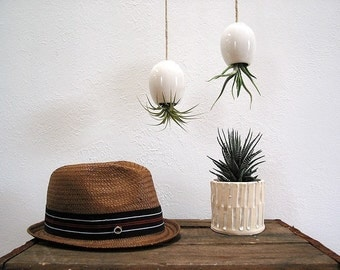 Hanging AirPlant Pod - Gorgeous Glossy White
