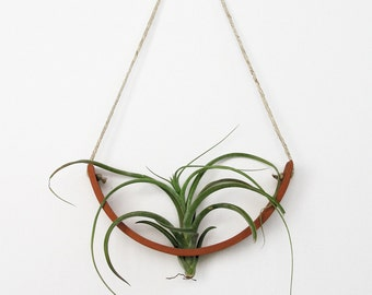 Hanging Air Plant Cradle (tm)   Natural TerraCotta Awesome Design