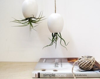 LAST ONE - Hanging Air Plant Planter - Silky Matte White