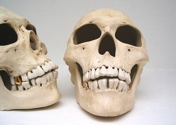 Realistic ceramic miner human skull - MADE TO ORDER