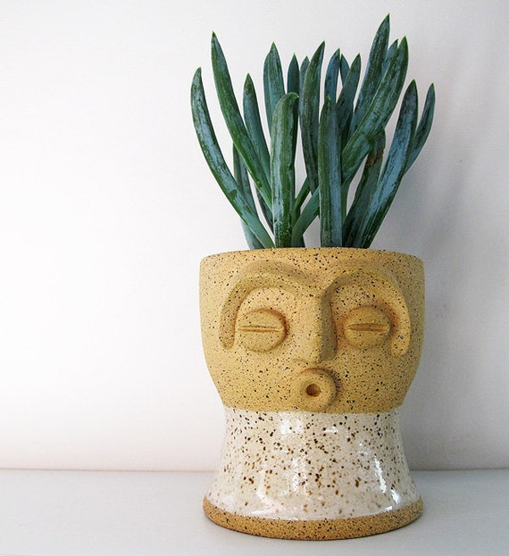 Limited edition face planter - perfect for air plant, succulent or cactus