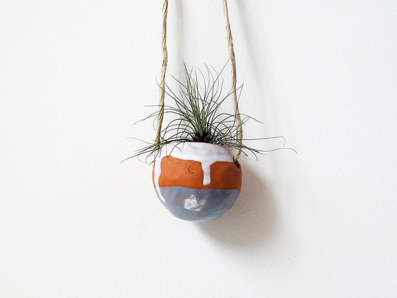 Real Men Like Plants Too - Father's Day Terracotta hanging planter pot vase blue and white - for air plant, succulent or cactus
