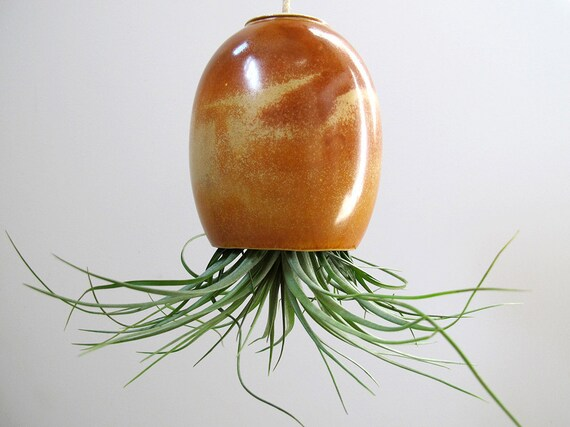 LARGE Red Brown Ceramic Pottery Hanging Air Plant Pod (tm)