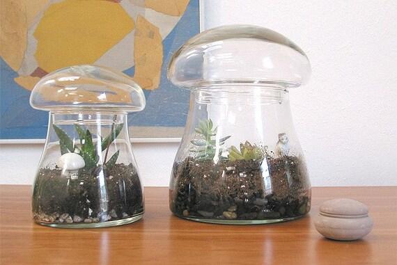 Large Terrarium Kit - Vintage Glass Mushroom