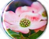 Flat Art Pocket Mirror -  Pink Dogwood Flower Series by Nathan Baerreis