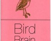Bird Brain 5