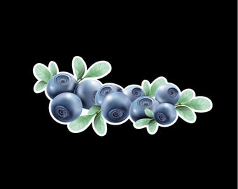 Blueberry Vinyl Decal