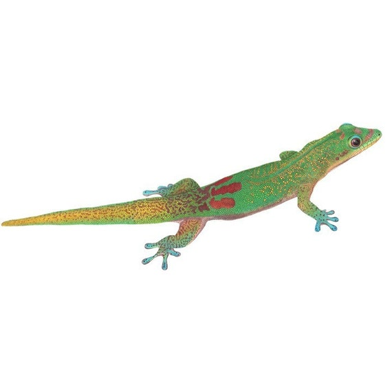 Beautiful Gold Dust Day Gecko Vinyl Wall Decal