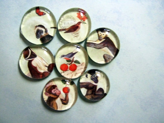 Vintage Monkey Magnet Set