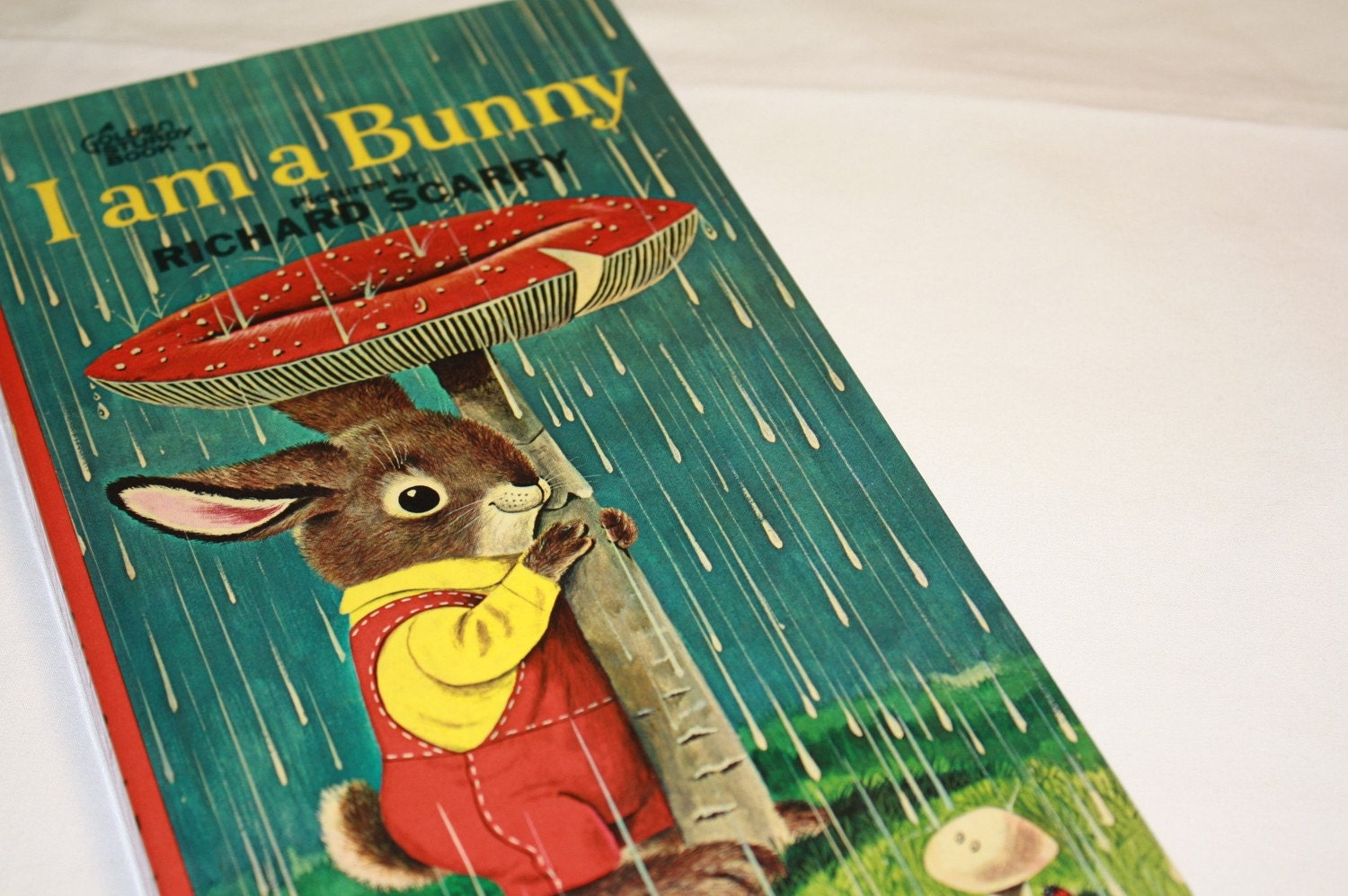 Vintage Board Book I Am A Bunny Richard Scary