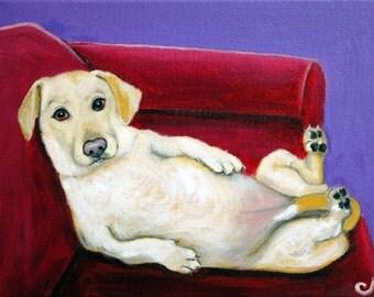 Lazy Yellow Labrador, Lab Fine Art Prints by Carol Iyer