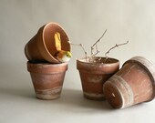 Small Clay Planter Pots, Rustic Limed Earthy Ramekins