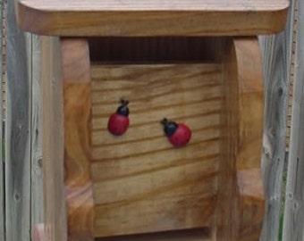 Walnut Ladybug House