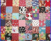 Educational Toddler Quilt Baby Bears Cows Bubbles Snowmen Tractor Sports Airplane Fish Alphabet