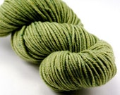 SALE LETTUCE superwash merino\/cashmere\/nylon SIREN TWO worsted