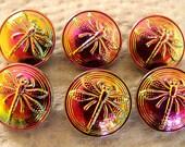 Czech Glass Buttons    6 pcs   33mm   Dragonfly  vitrail medium    D 045