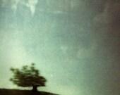 Fool on the Hill -- 5x7 polaroid print