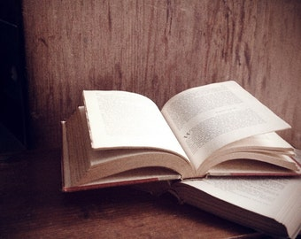 SALE - A Good Book Has No Ending -- 8x10 print