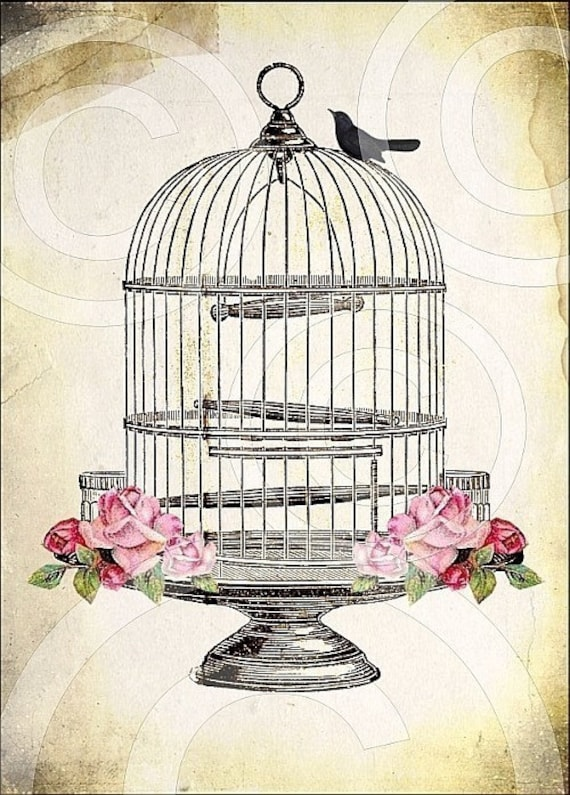 antique bird cage digital collage sheet large 5x7 printable. Black Bedroom Furniture Sets. Home Design Ideas