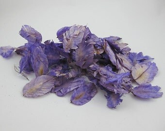 Lavender Tulip Flowers for crafting, scrapbooking, potpourri, sachet, bowl filler, paper making