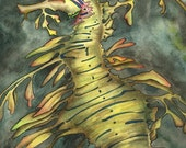 sea dragon aceo