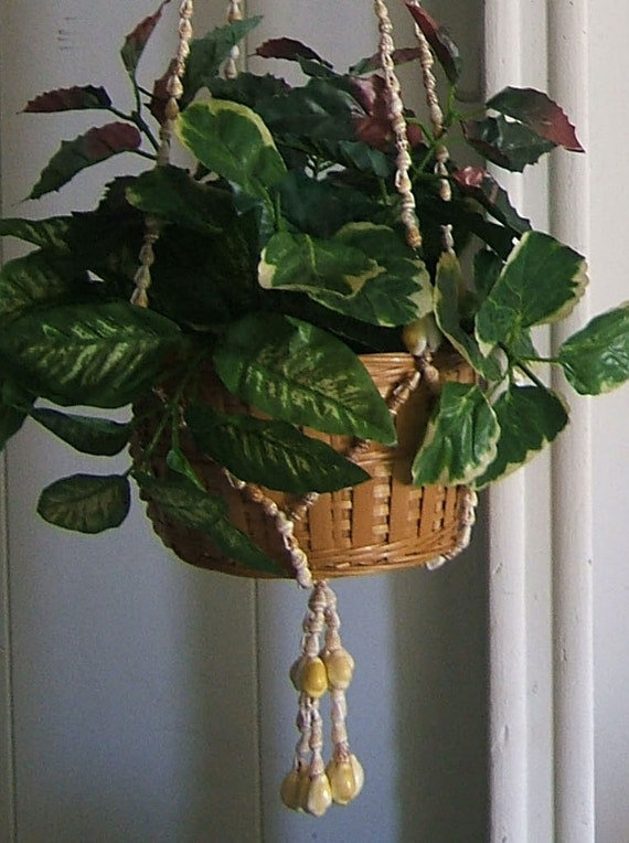 Seashell Plant Hanger with Plant and Basket - Great Beach Decor