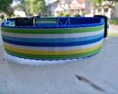 SALE- Bright Stripes Dog Collar- Small and Medium