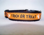 SALE- Trick or Treat  Halloween dog collar Small