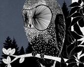 Night Owl - signed 8x8 fine art print