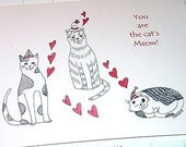 Cat Kitty Cats Kitties Anniversary Love Card You are the Cat's Meow
