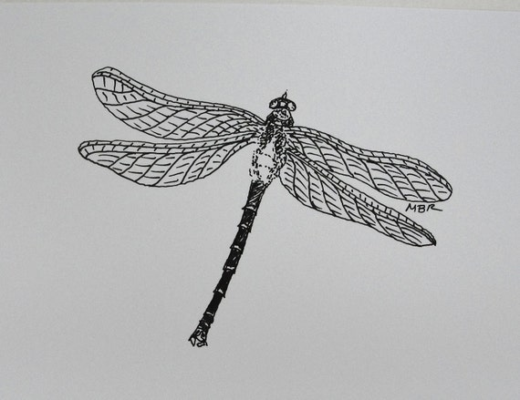Original Art Ink Drawing Dragonfly Art Black and White Insect Drawing Nature Art Illustration