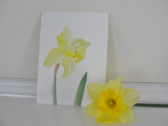 Yellow Flower Watercolor Painting, Daffodil Watercolor Painting, Botanical Painting, Garden Art, Home Decor