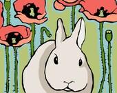 Little Poppy- Large Print