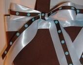 Chocolate Sky purse