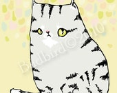 Tabby fine art cat print