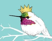 King of the Hummingbirds